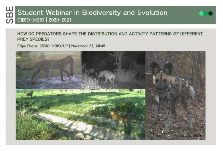HOW DO PREDATORS SHAPE THE DISTRIBUTION AND ACTIVITY PATTERNS OF DIFFERENT PREY SPECIES?